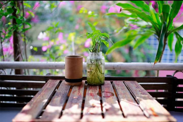 Daisy cafe Le Hong Phong